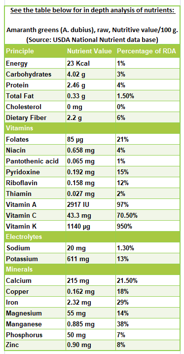 Amaranth greens nutrition facts