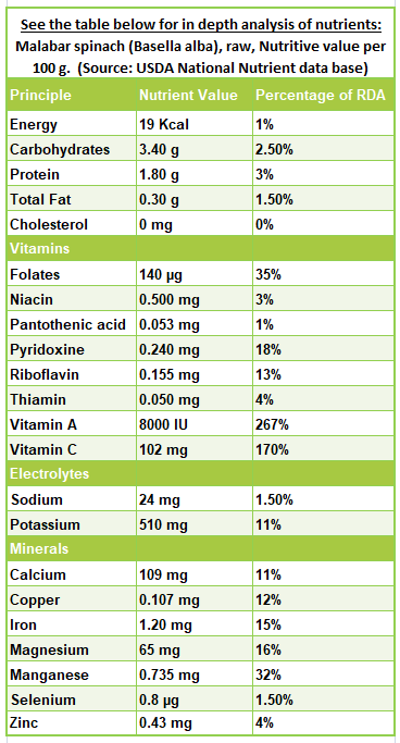 Basella (malabar spinach) nutrition facts