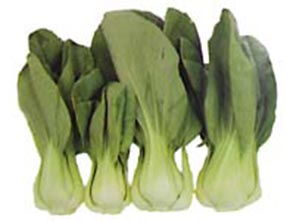 Bok Choy Chinese Cabbage Nutrition Facts And Health Benefits