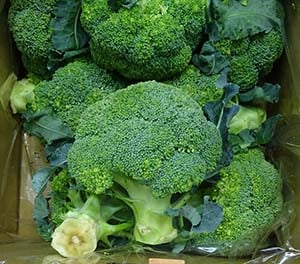 8 Amazing Broccoli Nutrition Facts And Health Benefits