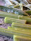 cardoon sections