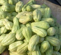 fresh mirlitons (chayote) in a market
