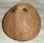 coconut, husk removed
