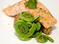 fiddlehead fern and salmon recipe
