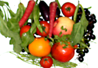 fruit and vegetables rich in carotenes
