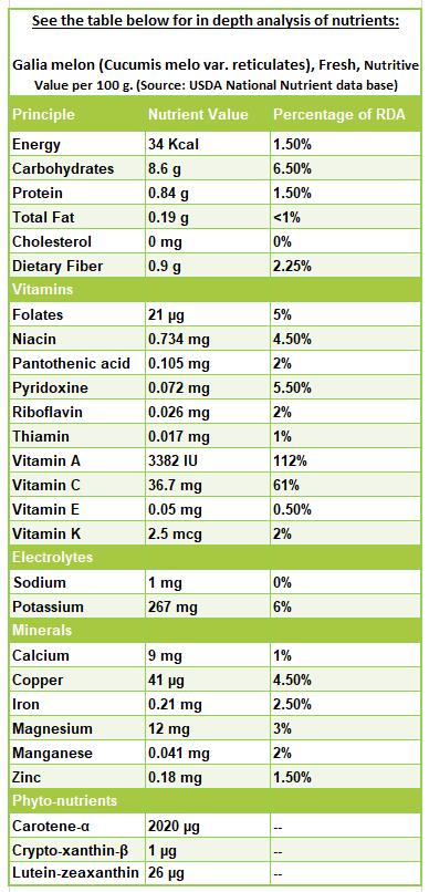 Galia-melon-nutrition-facts
