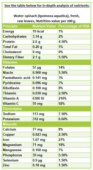 Kangkong Water Spinach Nutrition Facts And Health Benefits