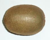 kiwifruit-chinese gooseberry
