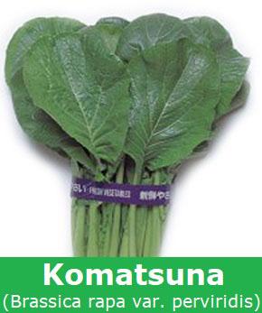 Komatsuna
