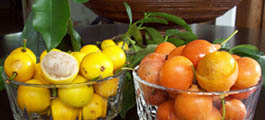 lemon-drop-and-African-mangosteens