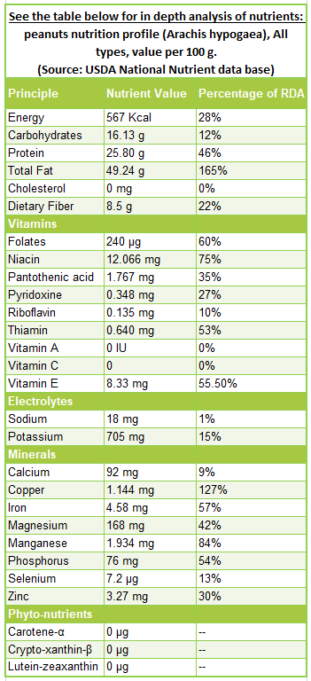 Peanuts nutrition facts