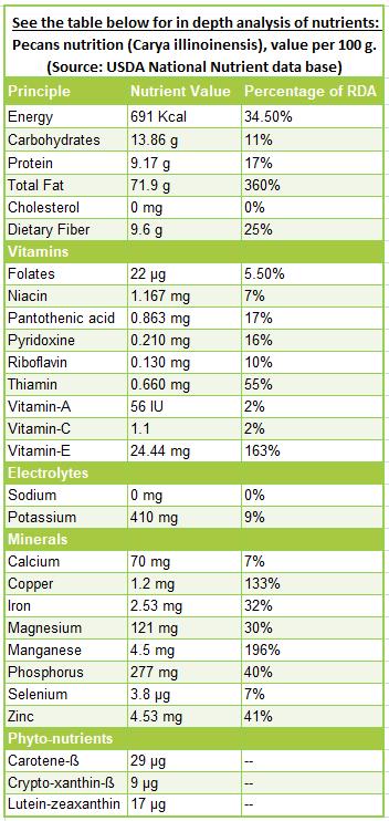 Pecans-nutrition-facts