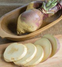 yellow turnips