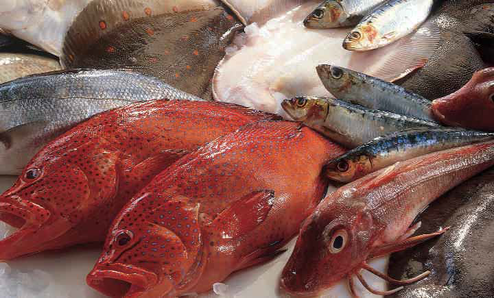 seafood nutriion facts