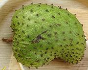 soursop -guanabana