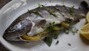 trout fish baked