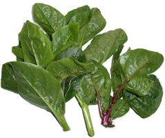 Basella (Malabar spinach) nutrition facts and health benefits