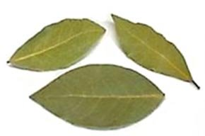 bay leaves or bay laurel