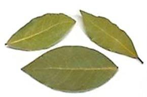 bay leaves or bay laurel