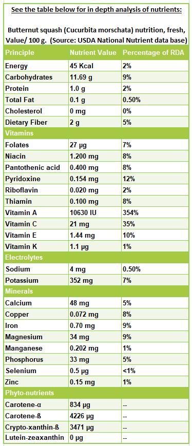 Butternut squash nutrition facts