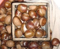 chestnuts in South Korean market