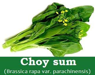 Choy sum