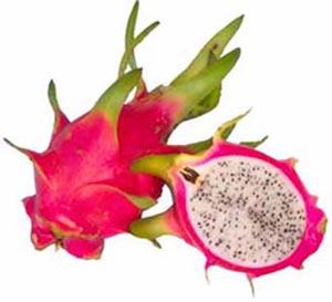 Dragon fruit (pithaya)