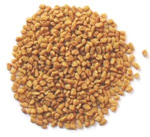 fenugreek seeds - Trigonella-foenum-graecum