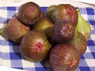 figs11