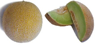Galia melon with sections
