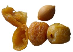 ginkgo nut and fruits