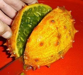 horned melon nutrition facts and health benefits