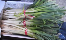 fresh leeks in a market