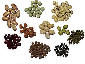 common legumes