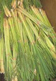 lemon grass stems