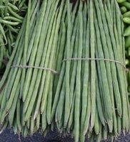 moringa-pods in a market