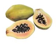 papaya fruit (pawpaw)