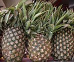 Pineapples in a market