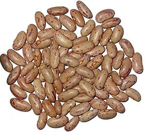 10 Incredible Pinto Beans Nutrition Facts And Health Benefits