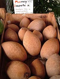 Mamey (Red) sapote in a market