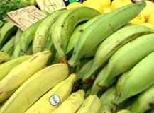 raw green and ripe plantains