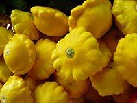 scallopini squash in a market