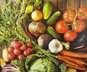 Vegetable-nutrition