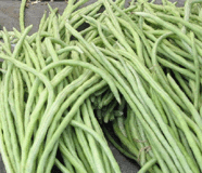 light green yardlong beans in a market