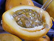 golden yellow passion fruit1